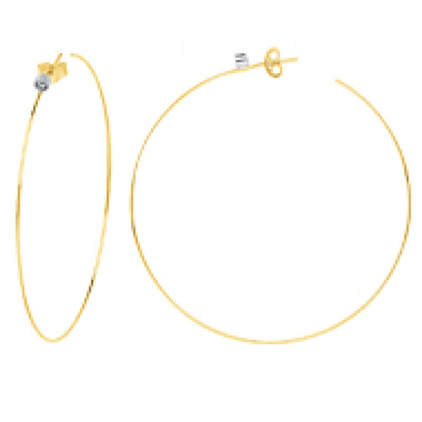 14k Yellow Gold Hoops w Diamond